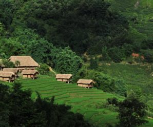 ECO PALMS HOUSE SAPA, Lao Chải ****