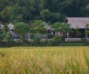 Sol Bungalows, Mai Châu Hòa Bình