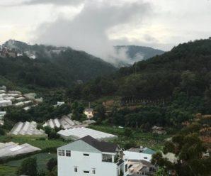 Valley View Villa, Phường 8, Đà Lạt