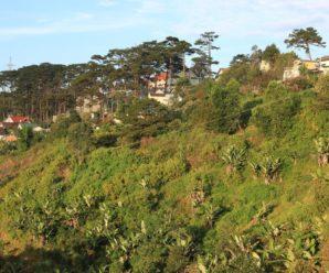 Top Dalat Villa for Company Trip